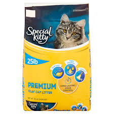 special kitty fresh scent premium clay cat litter 25 lb walmart com