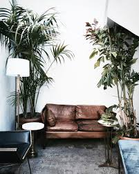 pattonmelo home pinterest interiors living rooms and plants