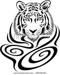 tiger vector illustration design stock vector