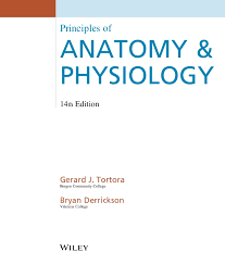 Anatomy And Physiology Glossary Principles Of Anatomy And Physiology 14th Edition Pdf Free By Tortora