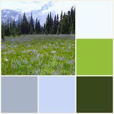 tender arts studio new home color palettes
