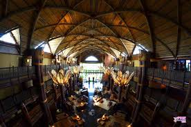 animal kingdom lodge review mousechat net orlando news