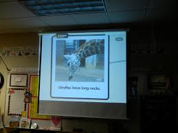 giraffes a popplet and a project technology in early childhood