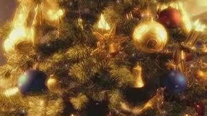 christmas tree pic christmas tree tradition history britannica com