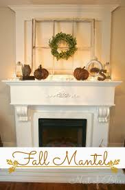 107 best fireplaces images on pinterest fireplace ideas