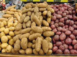 Container Gardening Potatoes - 45 best potatoes images on pinterest potato varieties planting