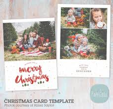 newborn photography trifold brochure template pg019 paper lark