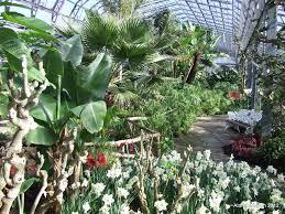 winter gardens all year round aberdeen action on disability