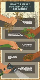 tips for protecting your garden in winter fix com