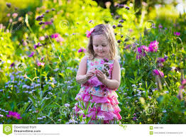 little in flower garden stock photo image 58581482