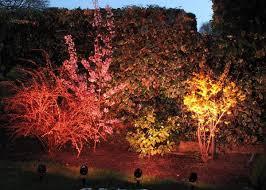 Backyard Led Lighting Led Garden Landscape Light Dongguan Leysun Light Co Ltd