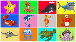 learning sea animals names water ocean for kids children learn