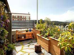 rooftop vegetable garden ideas india apartment rooftop garden