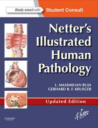 Netter Atlas Of Human Anatomy Pdf Download Atlas Of Human Anatomy 6th Edition Pdf Free Download E Books