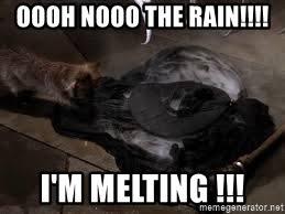 Melting Meme - oooh nooo the rain i m melting wicked witch melted