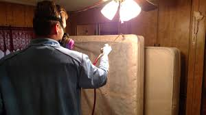 Bed Bug Heat Treatment Cost Estimate by Bed Bug Spray Treatment In Mesa Az 100 Guaranteed And Low Cost