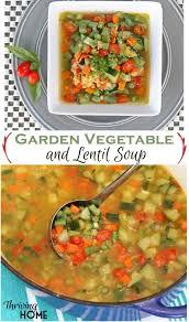 best 25 garden vegetable soup ideas on pinterest vegetarian