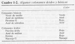 introducción a la técnica histológica página 2 monografias com