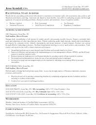 sle resume for accounts payable and receivable video poker accounting auditor resume