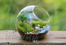 2018 glass moss orb terrarium air plants indoor garden terrarium