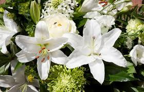 funeral flower etiquette proper etiquette for sending funeral flowers
