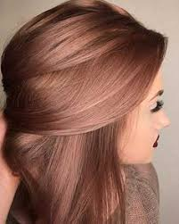 flesh color hair trend 2015 best 25 hair colour trends ideas on pinterest ombre hair dark