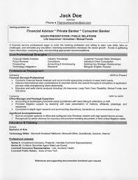 Resume Summary Examples Sales A Good Resume Exle Www Agrahotel Co