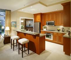 open kitchen designs in small apartments kitchen design