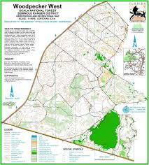 Map Of Spring Hill Florida by Florida Orienteering