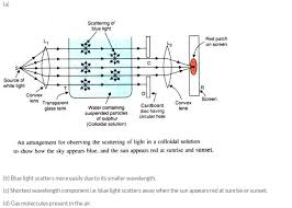 the scattering of light by colloids is called lakhmir singh physics class 10 solutions the human eyes and the