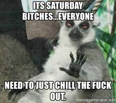 It S Saturday Meme - its saturday bitches everyone need to just chill the fuck out