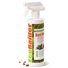 The Best Way To Kill Bed Bugs What Is The Best Bed Bug Spray For Home Bed Bug Treatment Site