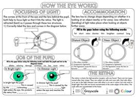 gcse nervous system the eye by beckystoke teaching resources tes