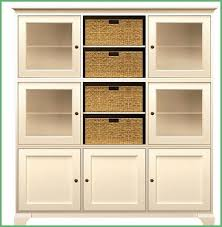 Tall Storage Cabinet With Doors And Shelves by Tall Wooden Storage Cabinet With Doors Imanisr Com