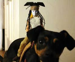 lone ranger halloween costume tonto dog rider costume 18 steps with pictures