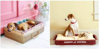 Heavy Duty Diy Bed Youtube by 14 Adorable Diy Dog Bed Cheap Pet Beds