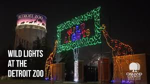 light up your holiday season with wild lights at the detroit zoo