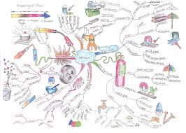 Mind Map Examples Metals Mind Map Mnemonics Pinterest Chemistry And