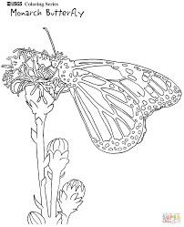 monarch butterfly sits on a daisy coloring page free printable