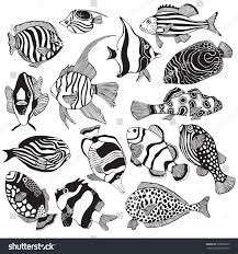 set black white tropical fish exotic stock vector 508020325