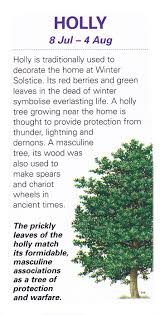 best 25 celtic tree ideas that you will like on pinterest