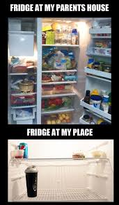 Fridge Meme - parents fridge vs my own fridge viral viral videos