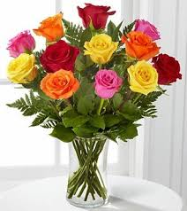 dozen roses multicolored