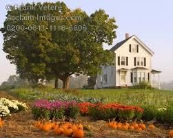 new england farmhouse photo of a new england farmhouse in autumn