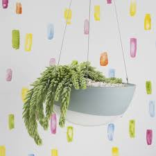 wall hanging planters home angus u0026 celeste