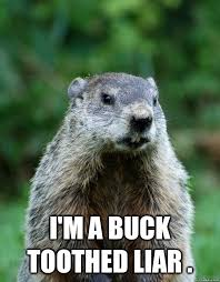 Groundhog Meme - i m a buck toothed liar groundhog day quickmeme
