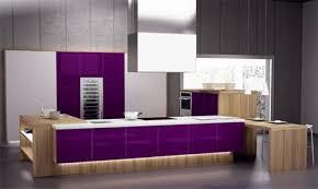purple kitchen ideas purple kitchens and purple kitchen ideas by spazzi