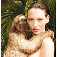 Sloth Meme Rape - rape sloth blank template imgflip