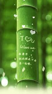 i love you green bamboo iphone 6 plus hd wallpaper hd free