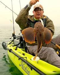 hobie fishing at cape cod hobie